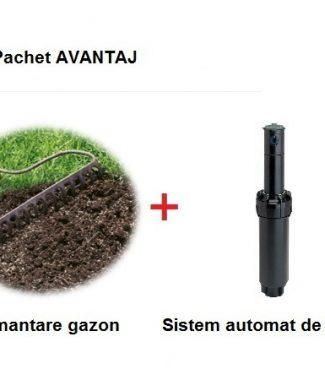 Insamantare gazon + Sistem automat de irigatie