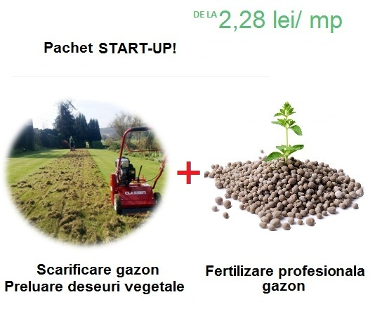 Promo pachet start-up
