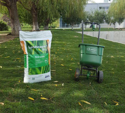 Fertilizare gazon